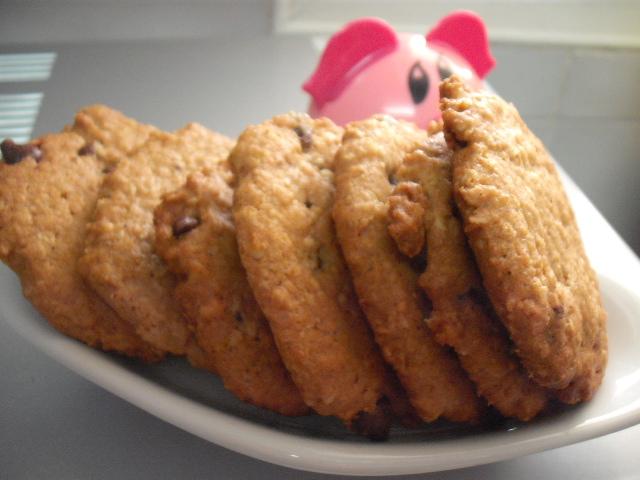 DSCF5118 - עוגיות שיבולת שועל חמאת בוטנים ושוקו צ'יפס