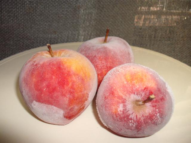 dscf6142 -  תפוח עץ קפוא - קינוח